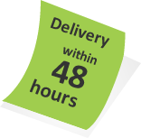 logo design service delivery in 48 hours